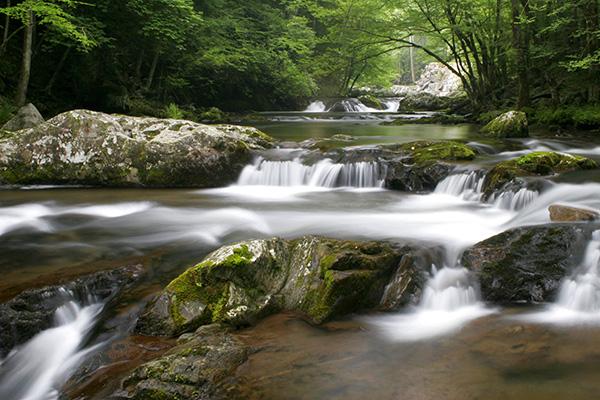 Mountain stream in Townsend, TN.